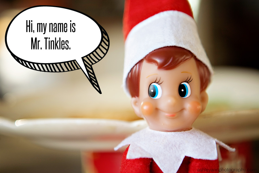 When little boys name an elf for Elf on the shelf pooping on cookies